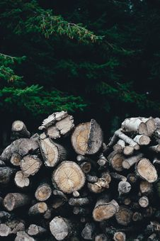 Free A Pile Od Brown Firewood Stock Images - 89570714