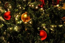 Free Christmas Tree Stock Photo - 89572650