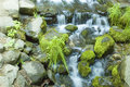 Free Miniature Waterfall And Pond Stock Image - 8966321