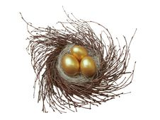 Free Gold Nest Egg Stock Photo - 8961330