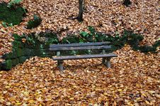 Free Park Bench Royalty Free Stock Photo - 8963815