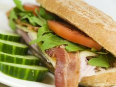 Free Fresh Sandwich Lunch Stock Photo - 8965090