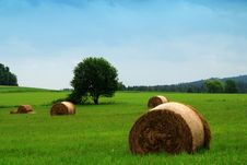 Free Straw Bales Royalty Free Stock Images - 8966179