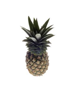 Free Pineapple Royalty Free Stock Photography - 8966747
