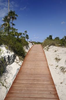 Free Walkway To The Beach Stock Images - 8968984