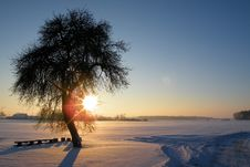 Free Sunset Over Snowy Field With Tree Royalty Free Stock Image - 89636936