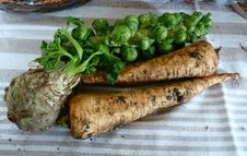 Free November 15th, 2014 Veg From The Hardwick Veg Shed Royalty Free Stock Images - 89689899