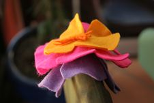 Free La Casita - 1st Visit - 5 Royalty Free Stock Photos - 89690218