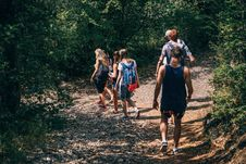 Free People Walking On Dirt Path In Forest At Daytime Royalty Free Stock Images - 89691809