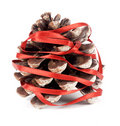 Free Pinecone Royalty Free Stock Image - 8974016