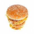 Free Hamburger Stock Photo - 8978990