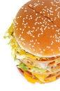 Free Hamburger Royalty Free Stock Image - 8978996