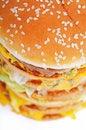 Free Hamburger Royalty Free Stock Image - 8979126