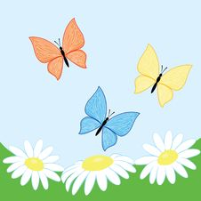 Free Vector Butterflies With Flowers Stock Photos - 8970063
