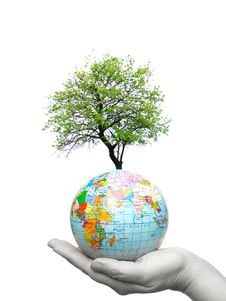 Free Globe In Hands Royalty Free Stock Images - 8972589