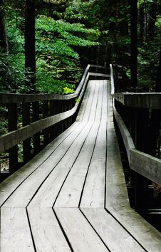 Free Wooden Boardwalk Throught The Green Forest Stock Photos - 8972623