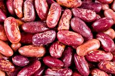 Free Haricot Beans Royalty Free Stock Photography - 8972917