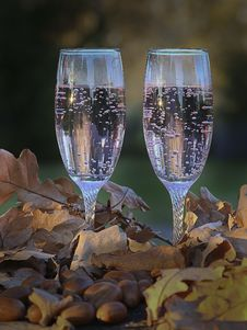 Free Glasses Of Champagne In Oak Leaves Royalty Free Stock Photo - 89741085