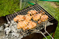 Free Chicken Grill Royalty Free Stock Photography - 8980167