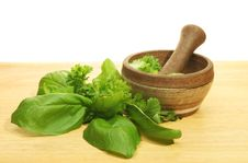 Free Pestle And Mortar With Herbs Royalty Free Stock Images - 8980359