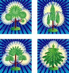 Free Four Magic Trees Stock Photo - 8980980
