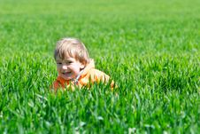 Free Boy In Green Grass Stock Photo - 8981930