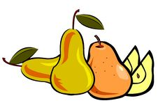 Free Still Life On A Composition Of Fruit Royalty Free Stock Photo - 8982225