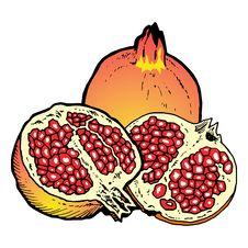 Free Illustration  Of Pomegranates Stock Images - 8982354