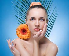 Free Portrait Of Beautiful Woman. Royalty Free Stock Image - 8982616