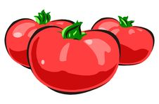 Free Illustration Of A Still Life Of Tomatoes Royalty Free Stock Image - 8982666