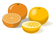 Free Composition Of Oranges On A White Royalty Free Stock Photo - 8982685