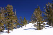 Free Lake Tahoe Royalty Free Stock Image - 8984126