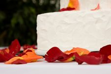 Free Cake Stock Images - 8984314