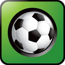 Free Soccer Ball Stock Photography - 8984392
