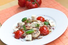 Mozzarella With Mushrooms , Mint Ant Baked Cherry Stock Images