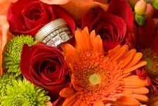 Free Rings Stock Photo - 8984460