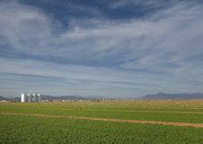 Free Rural Farm Landscape Stock Photo - 8985010