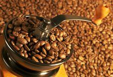 Free Coffee Stock Photo - 8986610