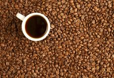 Free Coffee Royalty Free Stock Photography - 8986847