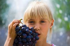 Free Grapes Royalty Free Stock Photo - 8987445