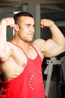 Free Biceps Stock Image - 8988691