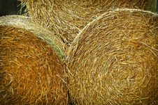 Free Bales Of Hay Royalty Free Stock Image - 89807766