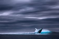 Free Wave, Wind Wave, Sea, Ocean Royalty Free Stock Photo - 89871815