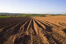 Free Ploughed Field Landscape Royalty Free Stock Image - 8992676