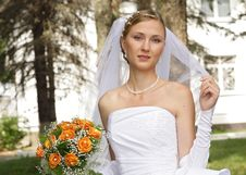 Free Beautiful Bride Stock Image - 8992961