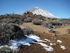 Free Volcano Teide And The Rests Of Snow Royalty Free Stock Photography - 8993787