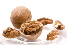 Free Walnut Stock Image - 8995091