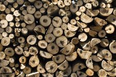 Free Pile Of Coniferous Fire-Wood Royalty Free Stock Image - 8995916