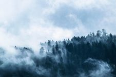 Free Sky, Cloud, Mist, Tree Stock Image - 89914651