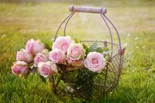 Free Flower, Pink, Flower Arranging, Plant Stock Photos - 89915293